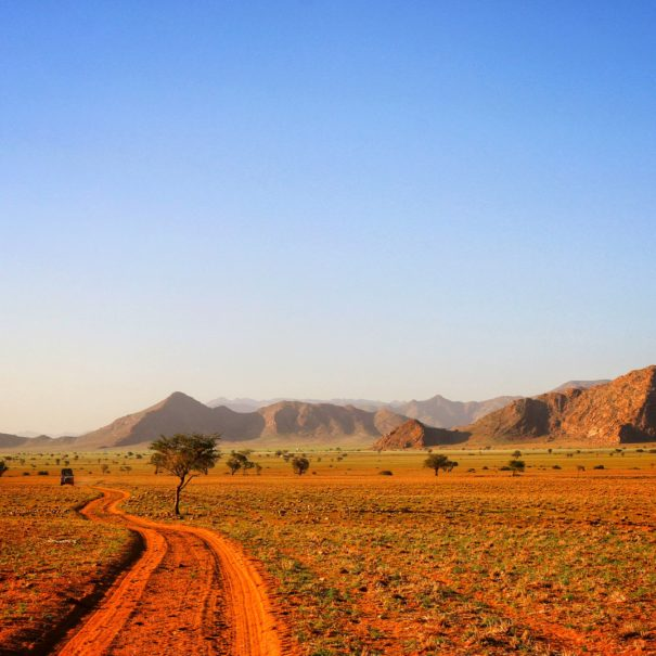 Road Trip Namibia self drive avontuur met survival school overleven en RAW Travel